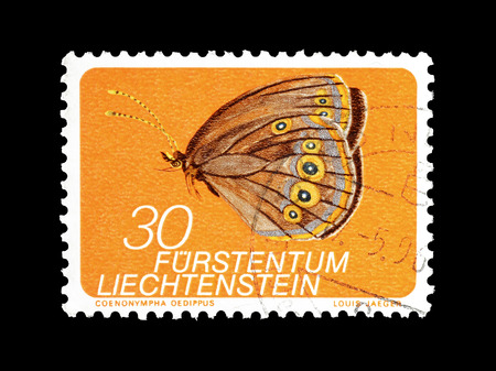 Cancelled postage stamp printed by Liechtenstein, that shows Butterfly, circa 1973.