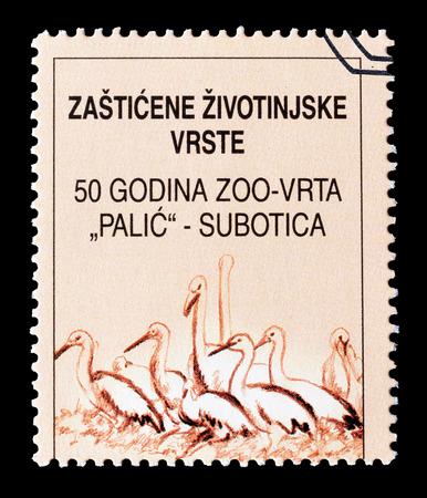 yugoslavia: Cancelled stamp printed by Yugoslavia, that shows Birds, circa 2001. Editorial