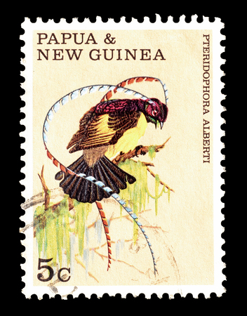 Cancelled postage stamp printed by Papua New Guinea, that shows Bird of Paradise, circa 1970.