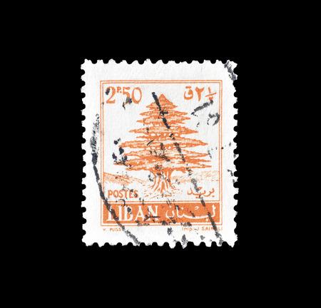 1961年頃の杉の木を示すレバノンによって印刷された郵便切手をキャンセルしました。 報道画像