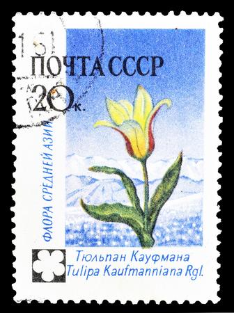 1960年頃のチューリップを示すソ連が印刷した郵便切手の取り消し。