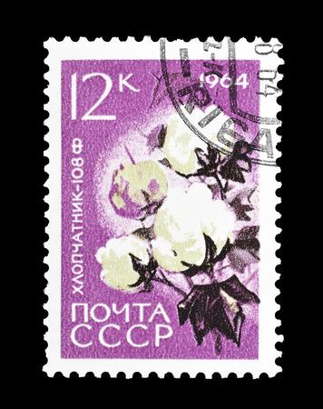 1964年頃のコットンを示すソ連が印刷した郵便切手の取り消し。 報道画像