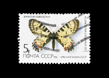 Cancelled postage stamp printed by Soviet Union, that shows Eastern Festoon butterfly, circa 1986.