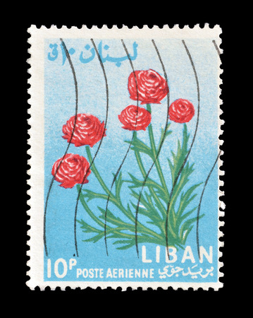 Cancelled postage stamp printed by Lebanon, that shows Ranunculus flower, circa 1964.