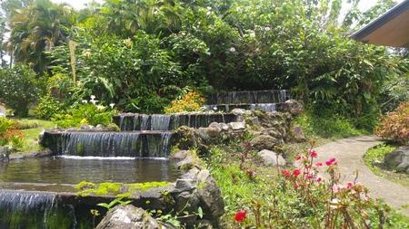 rood: Waterfall in panama city