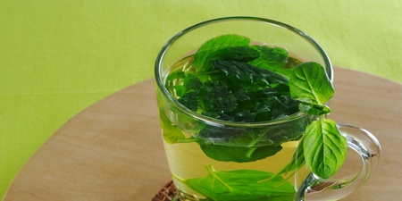 Fresh mint tea in glass cup with mint leaves on wooden board and green tablecloth (Selective Focus) Stock Photo - 9088238