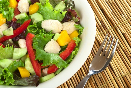 Fresh chicken salad with lettuce, mango, red bell pepper and cucumber (Selective Focus, Focus on the salad on the right) Stock Photo - 9365581