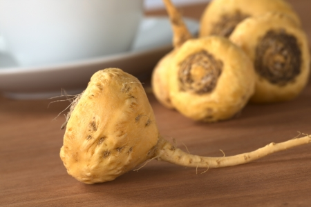maca: Peruvian Ginseng (Sp. Maca, lat. Lepidium meyenii) which is widely used in Peru for its various health effects and high nutritional value with a tea cup and saucer in the back on wood (Selective Focus, Focus on the front of the root)