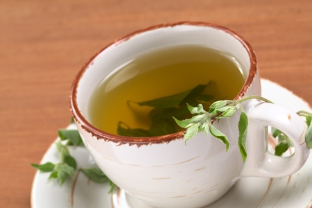 Herbal tea prepared from the Peruvian herb called Muna (lat. Minthostachys stetosa) which is used mainly for its positive digestive effects and has a mint-like taste (Selective Focus, Focus on the head of the fresh plant on the rim of the cup) Stock Photo - 9462727