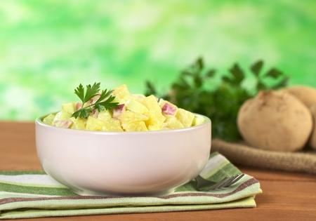 mayonesa: Ensalada de patatas de cocido de patatas, cebollas rojas y pepino, aderezada con un aderezo de mayonesa y decorado con una hoja de perejil (enfoque selectivo, enfoque en la parte frontal de la ensalada y la hoja)