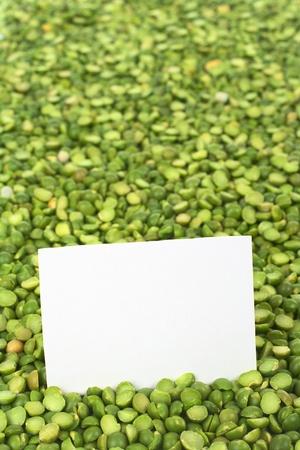 分割乾燥グリーン ピース ブランク カード (選択的なフォーカスのカード) 写真素材