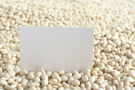 yankee: Raw navy beans (haricot beans, Boston beans, pea beans, Yankee beans) with a blank card (Selective Focus, Focus on the card)