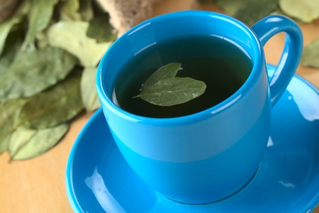 Popular Peruvian herbal tea made of dried coca (lat. Erythroxylum coca) leaves (Selective Focus, Focus on the lower edge of the front leaf on the top of the tea) Stock Photo - 10201836