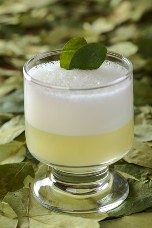 Peruvian cocktail called Coca Sour made of Pisco (Peruvian grape schnaps), coca leaves, lime juice, syrup and egg white (Selective Focus, Focus on the first coca leaf in the cocktail) photo