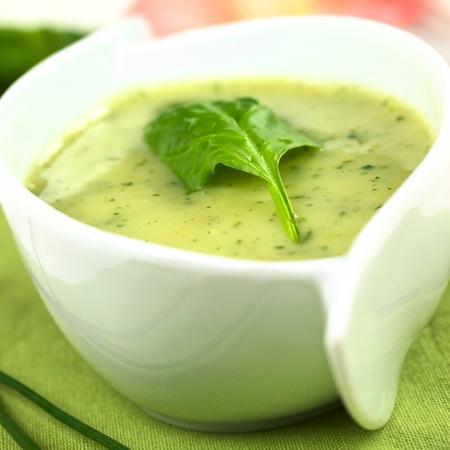 spinaci: Crema di spinaci in foglia di spinaci freschi in alto (Messa a fuoco selettiva, Focus sul bordo anteriore sinistro del foglio)