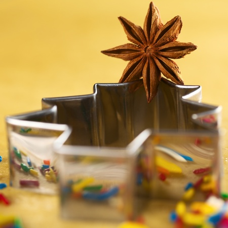 Star anise on Christmas tree shaped cookie cutter lying on dough (Selective Focus, Focus on the middle of the anise) Stock Photo - 11143420