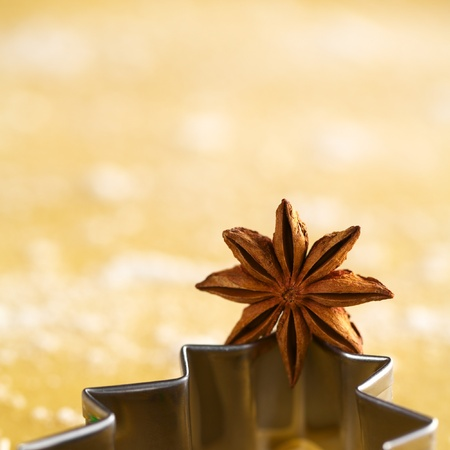 Star anise on Christmas tree shaped cookie cutter lying on dough photo
