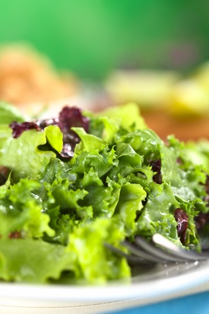 side salad: Fresh lettuce with a yogurt and lime juice dressing (Selective Focus, Focus one third into the salad) Stock Photo