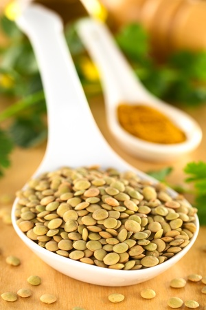 lentil: Raw brown lentil seeds with curry powder and cilantro in the back (Selective Focus, Focus one third into the lentils)