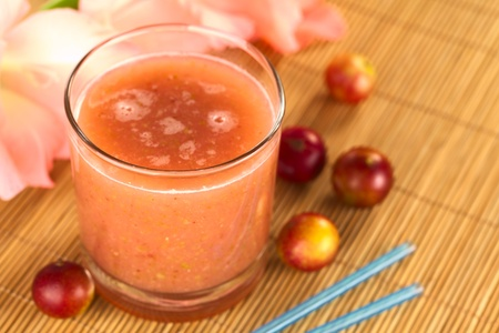 Juice out of Camu camu berry fruits (lat. Myrciaria dubia) which are grown in the Amazon region and have a very high Vitamin C content (Selective Focus, Focus on the front rim of the glass)
