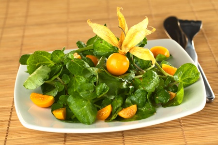 physalis: Fresh and healthy watercress (lat. Nasturtium officinale) and physalis (lat. Physalis peruviana) salad (Selective Focus, Focus on the front of the complete physalis berry in the middle of the salad)