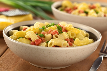 Two bowls full of fresh homemade elbow macaroni pasta with sausage pieces, grated cheese and green onion (Selective Focus, Focus one third into the first dish) Stock Photo - 13815285