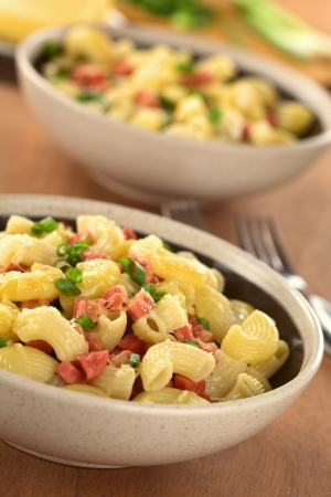 Two bowls full of fresh homemade elbow macaroni pasta with sausage pieces, grated cheese and green onion (Selective Focus, Focus one third into the first dish) Stock Photo - 13815282