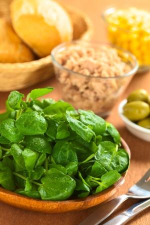 berros: Berro fresco en plato de madera con otros ingredientes de la ensalada (aceitunas, atún, maíz dulce) y bollos en granero (Enfoque, Enfoque tercero en el berro)