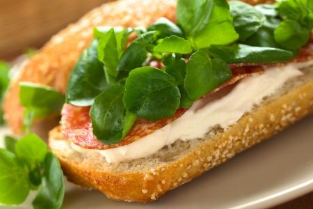 berros: Embutidos frescos, crema de queso y bocadillo de berros servido en un plato (Enfoque, Enfoque en el borde delantero izquierdo del sándwich) Foto de archivo