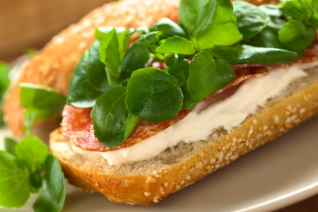 Fresh salami, cream cheese and watercress sandwich served on plate (Selective Focus, Focus on the left front edge of the sandwich) photo