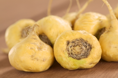 maca: Fresh maca roots or Peruvian ginseng (lat. Lepidium meyenii) which are popular in Peru for their various health effects (Selective Focus, Focus on the maca roots in the front) Stock Photo