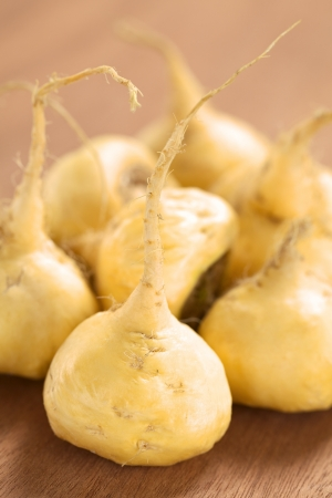 maca: Fresh maca roots or Peruvian ginseng (lat. Lepidium meyenii) which are popular in Peru for their various health effects (Selective Focus, Focus on the maca root in the front)