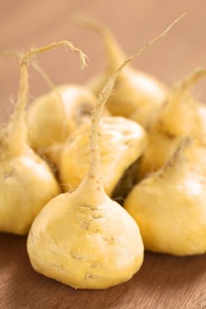 Verse maca wortels of Peruviaanse ginseng (lat. Lepidium meyenii), die populair zijn in Peru voor hun verschillende effecten op de gezondheid (selectieve aandacht, Focus op de maca wortel in de voorkant)