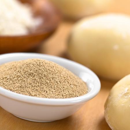 levure: La levure s�che active dans un petit bol avec de la farine et de la p�te (s�lective Focus, Focus dans le milieu de la levure s�che)