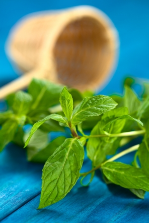 Fresh mint leaves on blue wood with tea strainer in the back Stock Photo - 22109870
