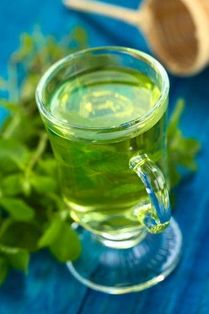 Freshly prepared mint tea out of fresh leaves served in glass cup  Stock Photo - 22109911