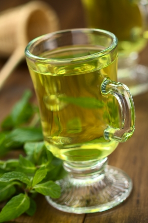 Freshly prepared mint tea out of fresh leaves served in glass cup photo