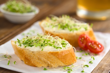 sandwich spread: Baguette slices spread with cream cheese and sprinkled with alfalfa sprouts  on sandwich paper (Selective Focus, Focus on the front of the cream cheese and sprouts on the first baguette slice)