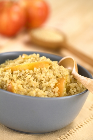 nutritive: Quinoa porridge with apple and cinnamon, which is a traditional Peruvian breakfast, served in a bowl (Selective Focus, Focus on the apple slice in the middle of the porridge)