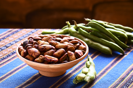 haba: Toasted fava beans (lat. Vicia faba, South America: haba) eaten as snack in Bolivia, served in clay bowl with fresh green fava beans on the side and in the back, photographed with natural light (Selective Focus, Focus one third into the toasted beans)