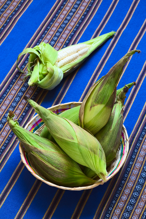 typically english: Basket of cobs of white corn called Choclo (Spanish), in English Peruvian or Cuzco corn, typically found in Peru and Bolivia and used in traditional dishes, such as the Peruvian ceviche (Photographed with natural light) (Selective Focus, Focus on the uppe