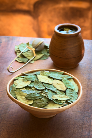 mate infusion: Dried coca leaves in clay bowl with fresh coca tea (mate de coca) in the back, photographed with natural light (Selective Focus, Focus on the middle of the coca leaves)