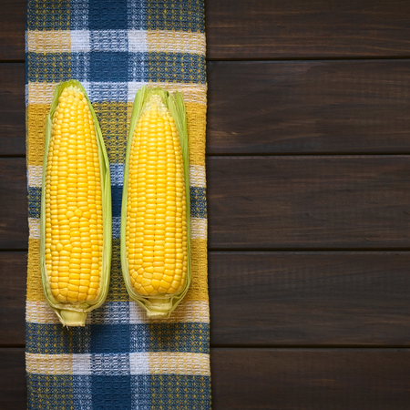 Overhead shot of husked cobs of sweet corn photographed on dish towel on dark wood with natural light photo