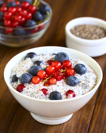 hispanica: Chia (lat. Salvia hispanica) seed pudding with blueberries and redcurrants in bowl, photographed on dark wood with natural light (Selective Focus, Focus one third into the pudding) Stock Photo