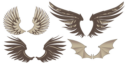 Set of decorative wings. Vector Illustration.