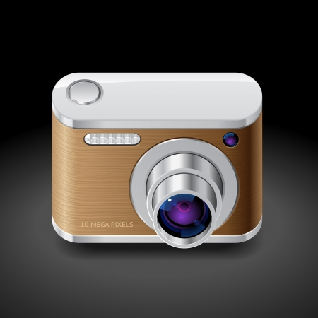 Icon for compact camera decorated with wood Vector