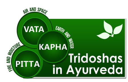 Tridoshas In Ayurveda Three Circles 스톡 콘텐츠