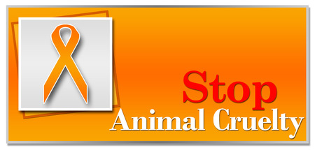 animal cruelty: Stop Animal Cruelty Orange