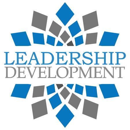 leadership development: Leadership Development Blue Grey Square Elements