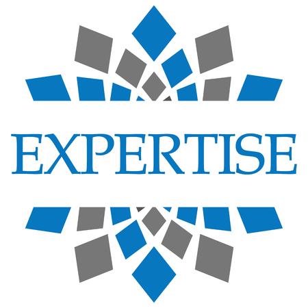 expertise: Expertise Blue Grey Circular